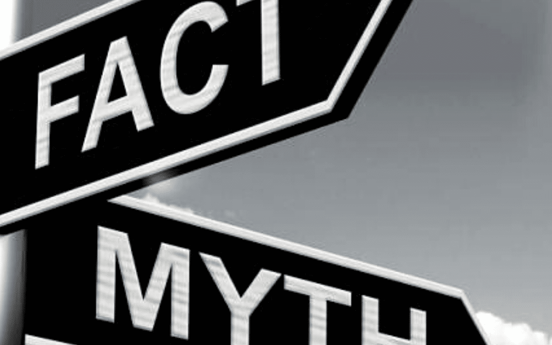 DEBUNKED: Press Release Myths and Truths